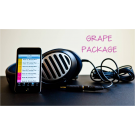 "DISCOUNTED PRICE Lollipop KIDS ""Grape"" Package -THIS IS OUR TOP PACKAGE!"